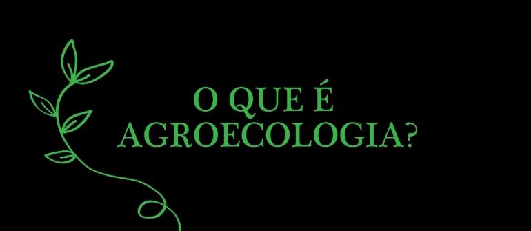 O QUE E AGROECOLOGIA?