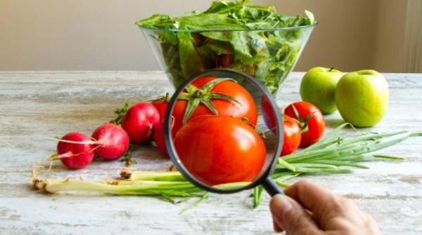 23% dos alimentos analisados pela Anvisa têm resíduos de agrotóxicos acima do limite permitido ou proibidos para cultura